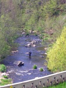 Évènements sportifs dans le Haut-Lignon avec le championnat de pêche à la mouche