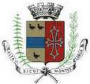 Logo de la ville de Tence